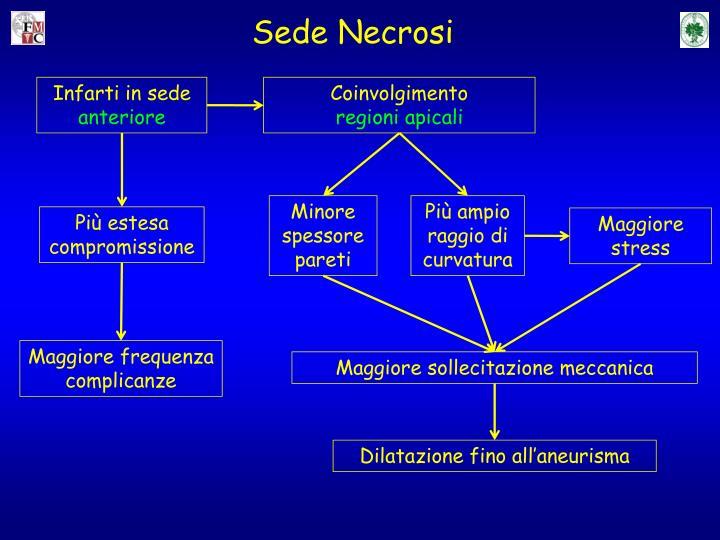 Sede Necrosi