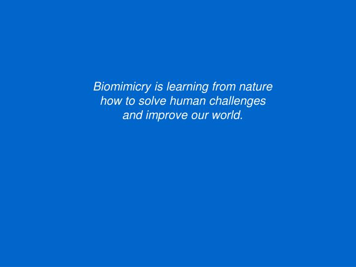 Biomimicry is learning from nature