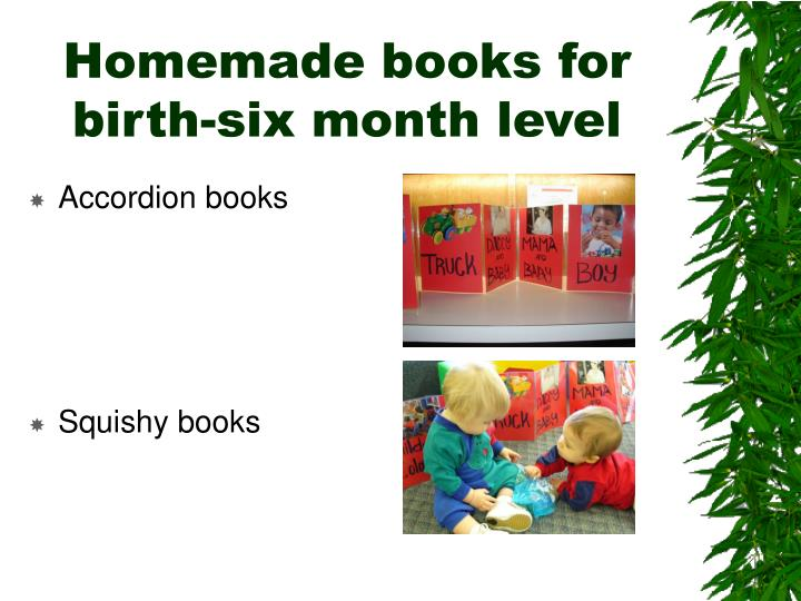 Homemade books for birth six month level