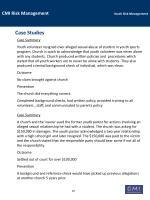 cmi risk management youth risk management27
