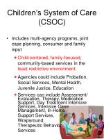 children s system of care csoc