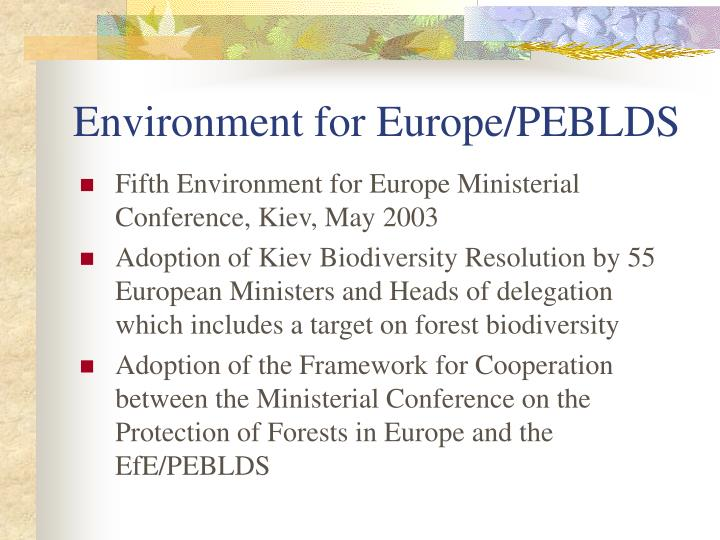 Environment for Europe/PEBLDS