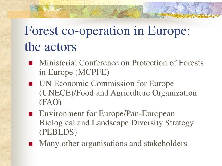 Forest co-operation in Europe: the actors