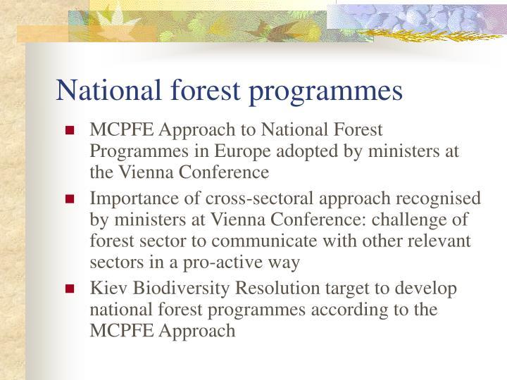 National forest programmes