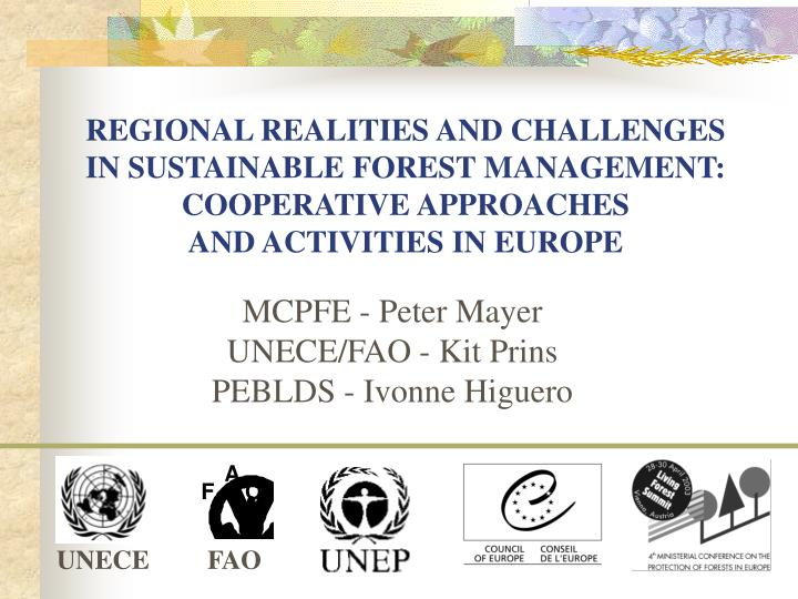 REGIONAL REALITIES AND CHALLENGES