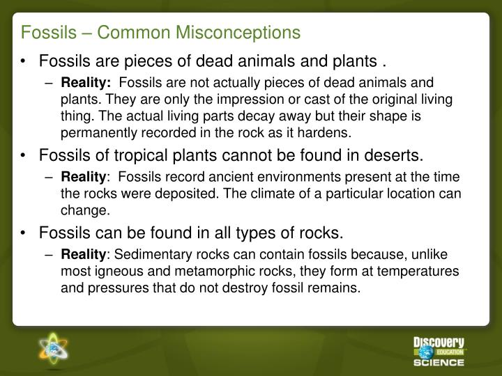 Fossils – Common Misconceptions