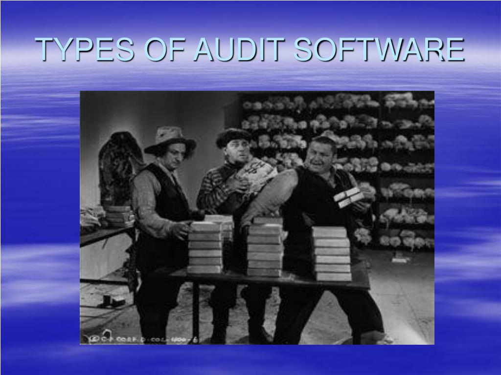 TYPES OF AUDIT SOFTWARE