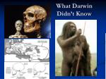 what darwin didn t know2