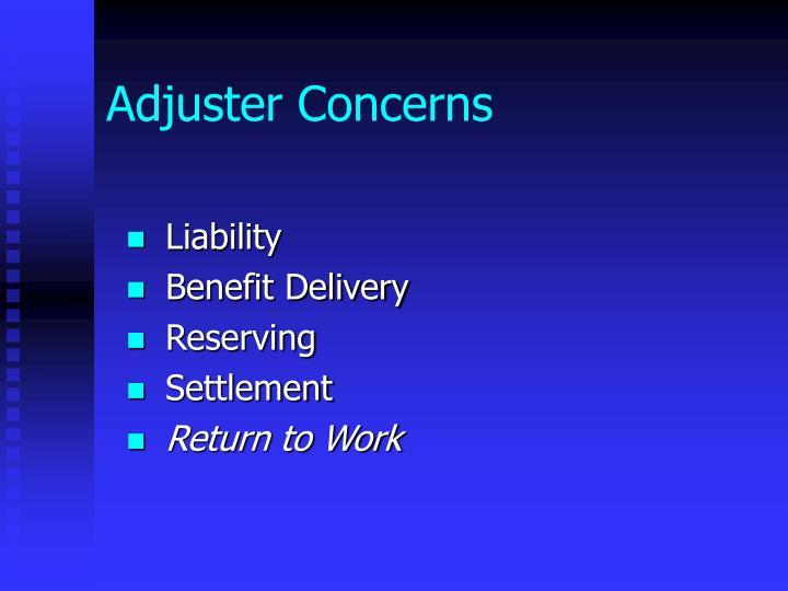 Adjuster Concerns