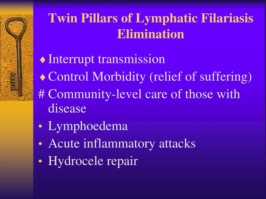 Twin Pillars of Lymphatic Filariasis Elimination