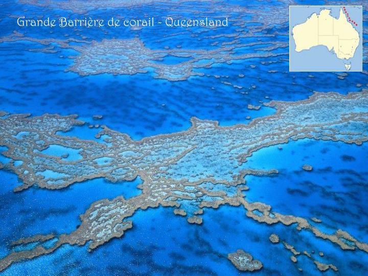Grande Barrière de corail - Queensland
