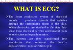what is ecg