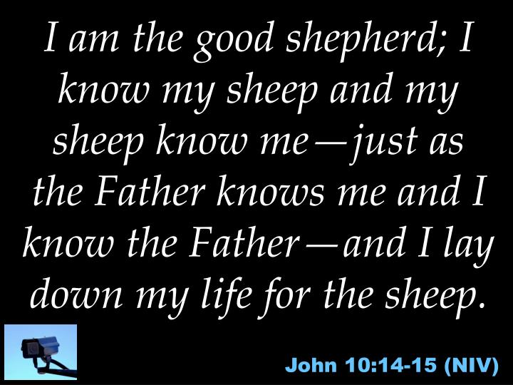 I am the good shepherd; I know my sheep and my sheep know me—just as the Father knows me and I know the Father—and I lay down my life for the sheep.