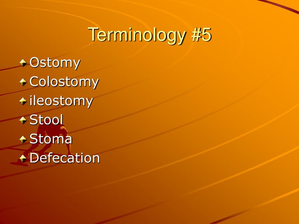 Terminology #5