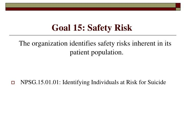 Goal 15: Safety Risk