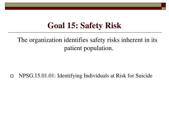 Goal 15: Safety Risk