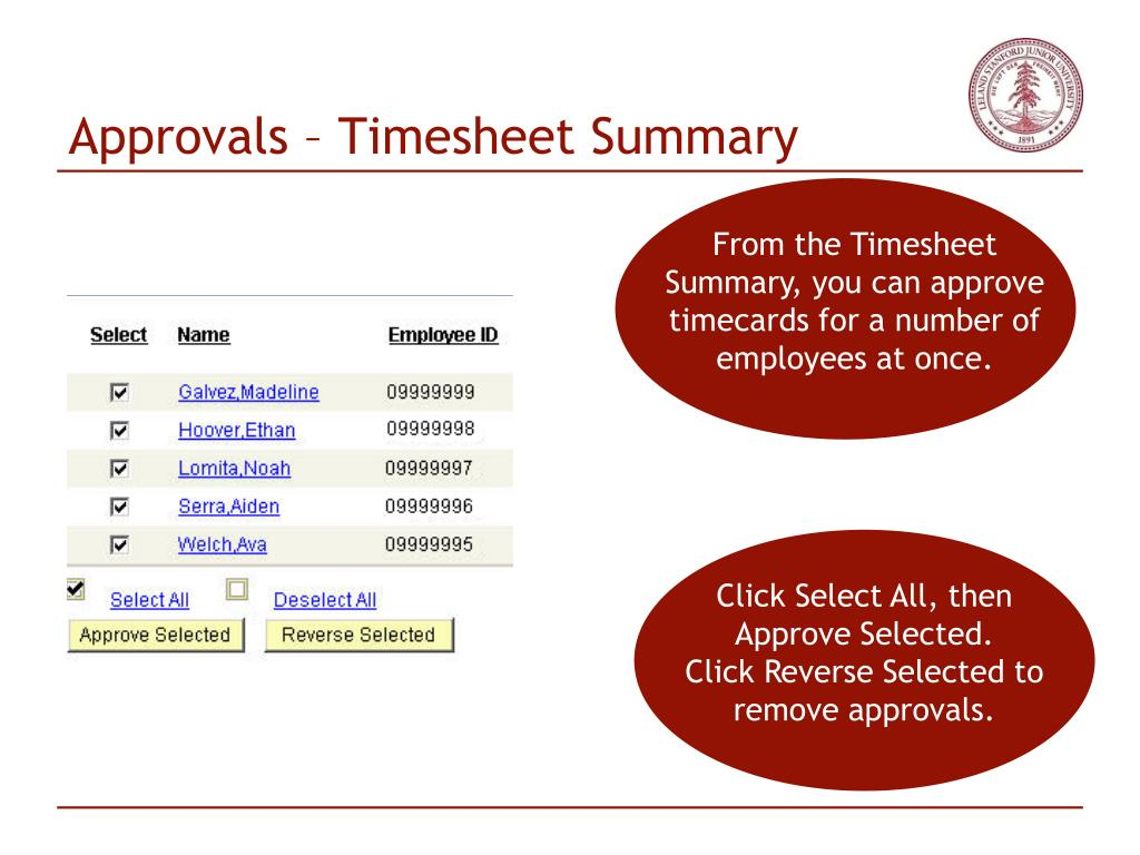 Approvals – Timesheet Summary