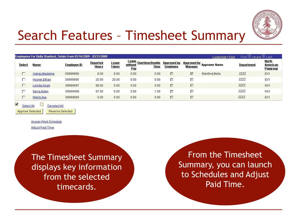 Search Features – Timesheet Summary