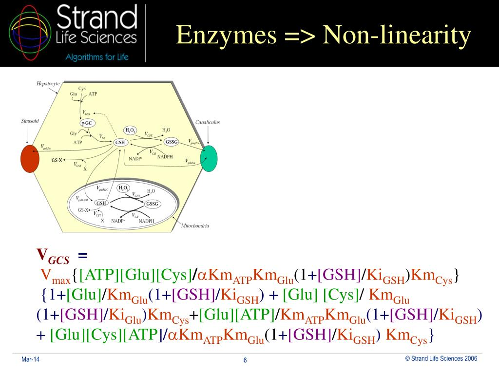 Enzymes => Non-linearity