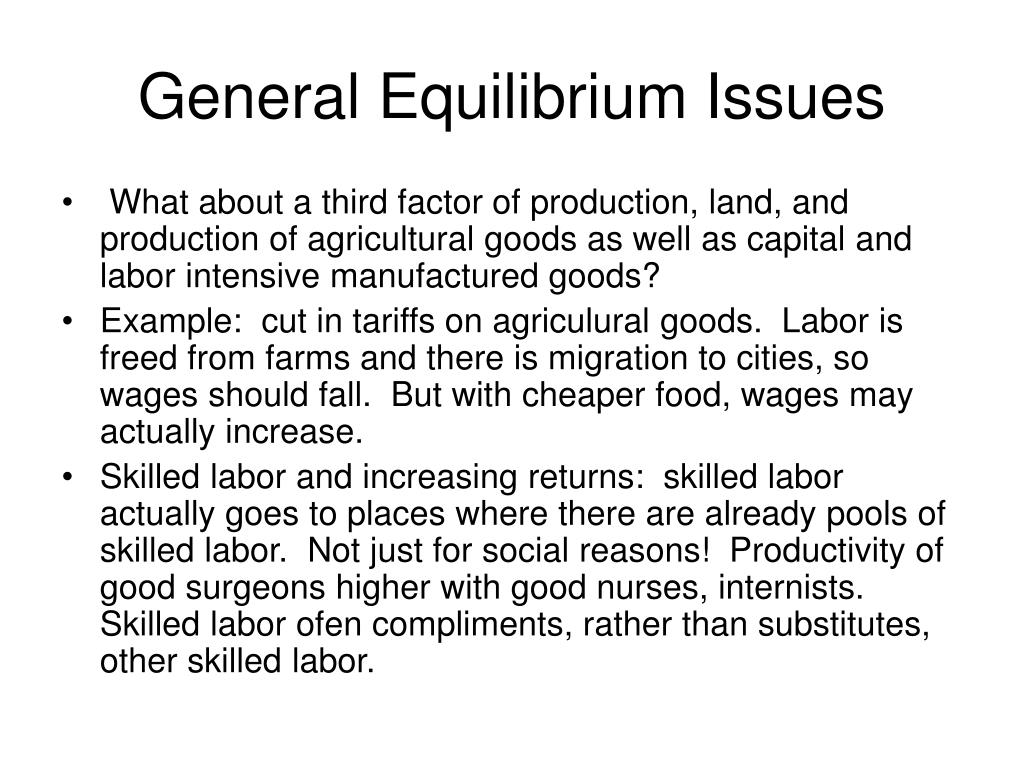 General Equilibrium Issues