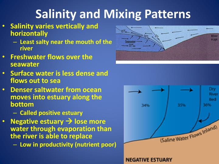 Salinity and Mixing Patterns