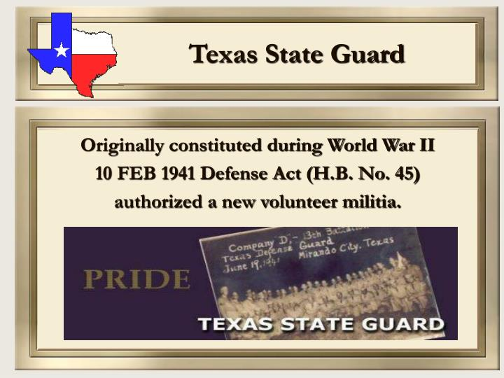 Texas state guard3