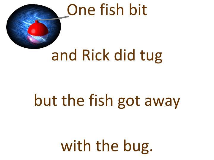 One fish bit