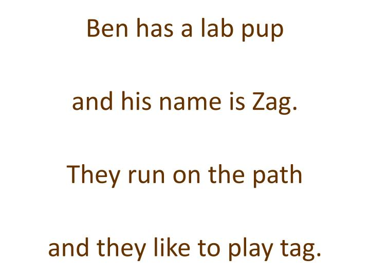 Ben has a lab pup