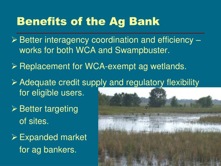 Benefits of the Ag Bank