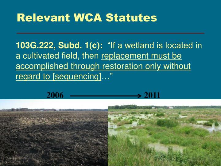 Relevant WCA Statutes