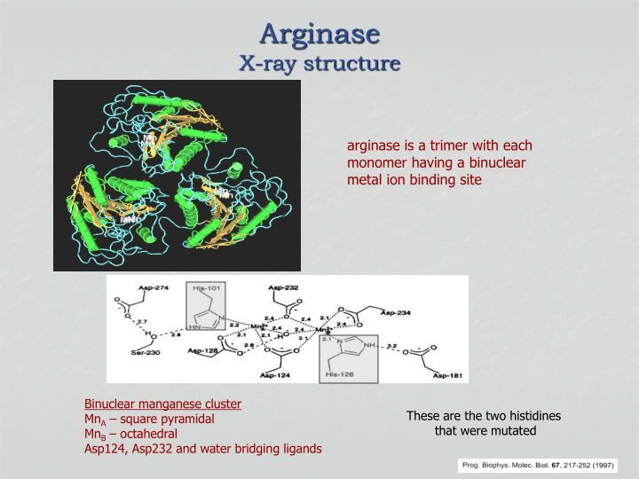 Arginase