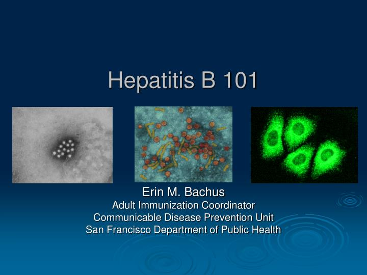 Hepatitis b 101