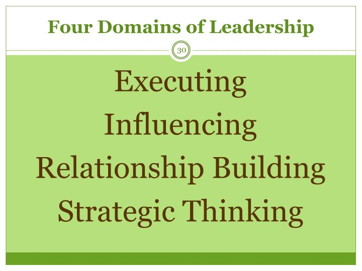 Four Domains of Leadership