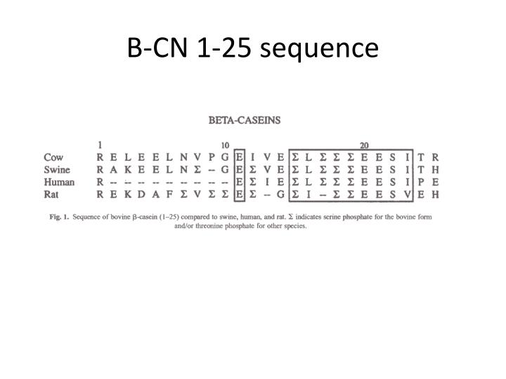B-CN 1-25 sequence