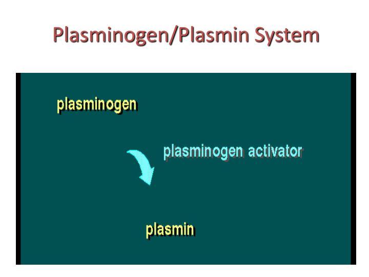 Plasminogen/Plasmin System