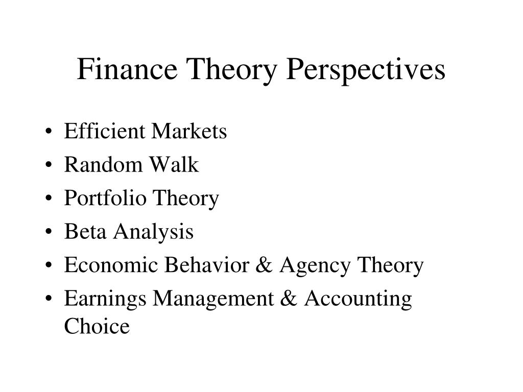 Finance Theory Perspectives