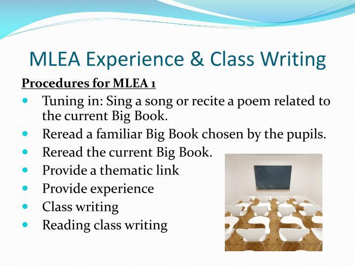 MLEA Experience & Class Writing