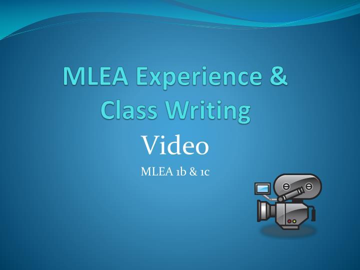 MLEA Experience &