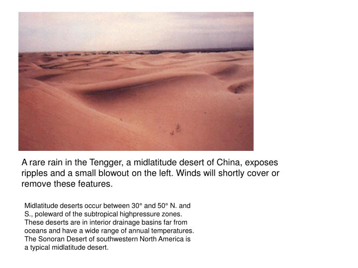 A rare rain in the Tengger, a midlatitude desert of China, exposes ripples and a small blowout on the left. Winds will shortly cover or remove these features.
