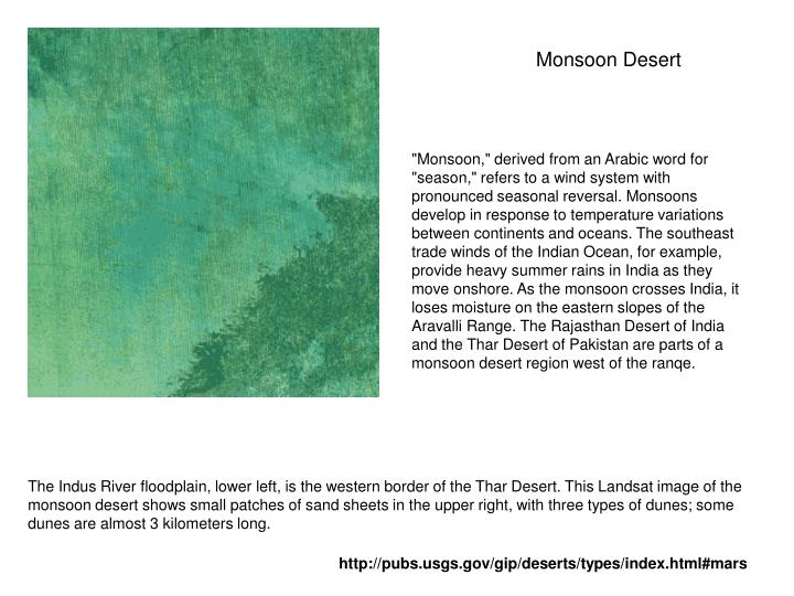 Monsoon Desert
