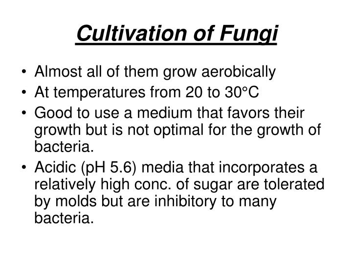 Cultivation of Fungi
