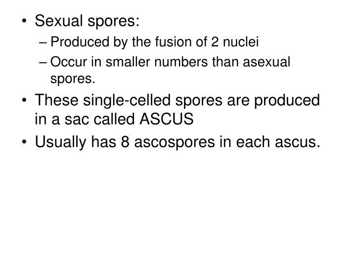 Sexual spores: