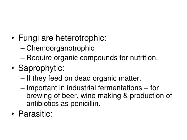 Fungi are heterotrophic: