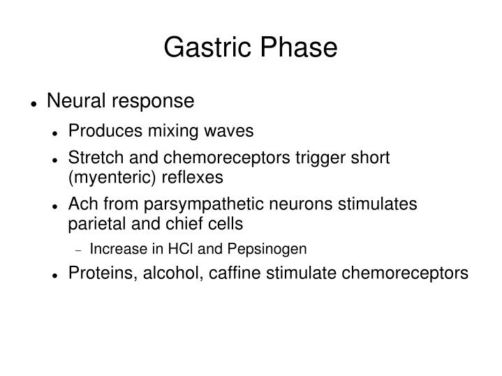 Gastric Phase