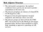 risk adjuster structure1