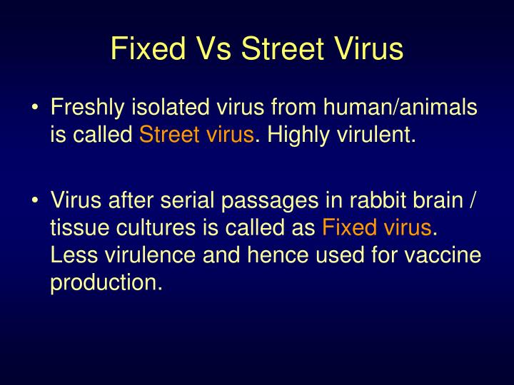 Fixed Vs Street Virus