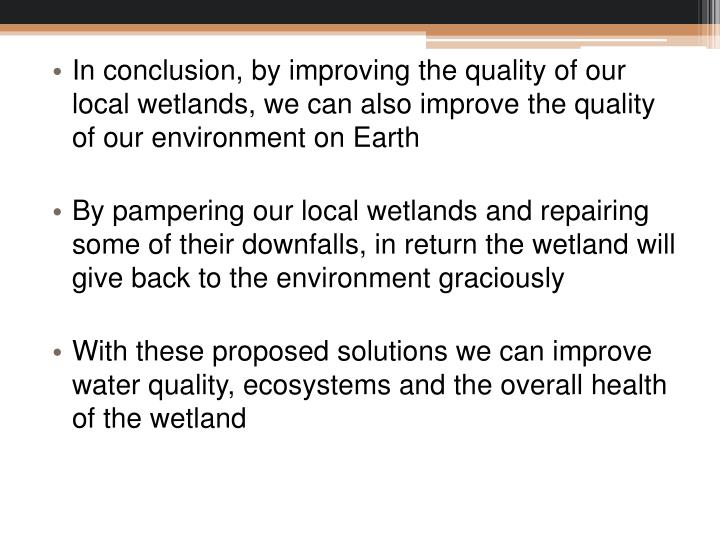 In conclusion, by improving the quality of our local wetlands, we can also improve the quality of our environment on Earth