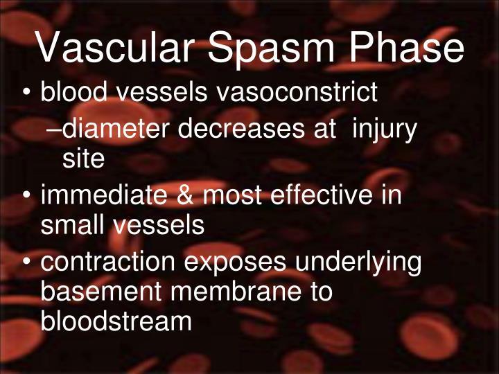 Vascular Spasm Phase