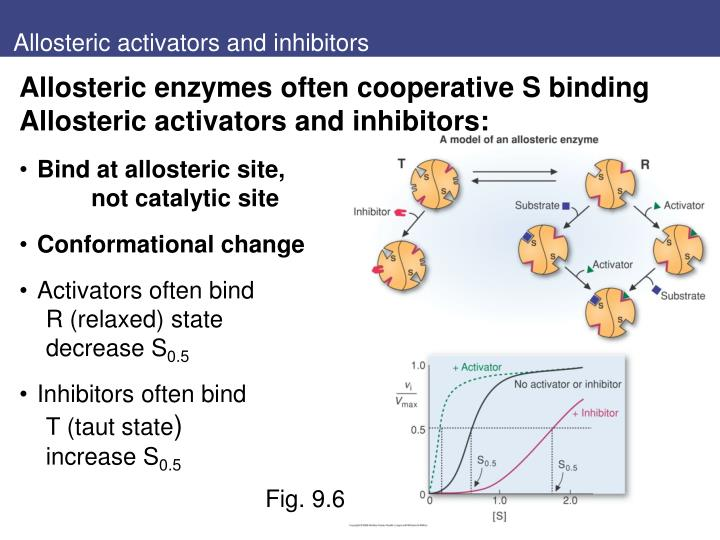Allosteric activators and inhibitors