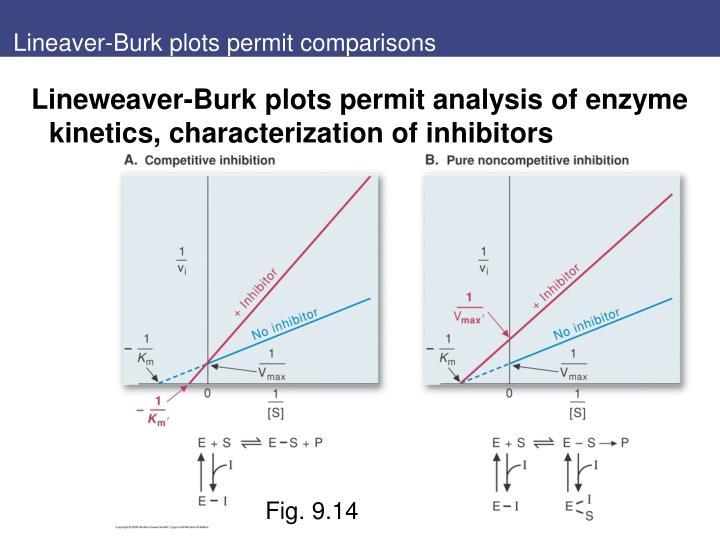 Lineaver-Burk plots permit comparisons
